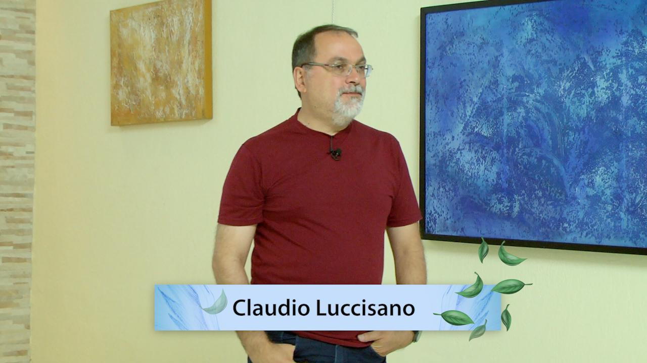 Palestra na Fraternidade 353 - Viver em Sociedade - Claudio Luccisano