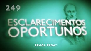 Esclarecimentos Oportunos 249 - Praga pega?