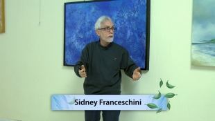 Palestra na Fraternidade 341 - Percepções, sensações e sofrimentos dos Espíritos - Sidney Franceschini